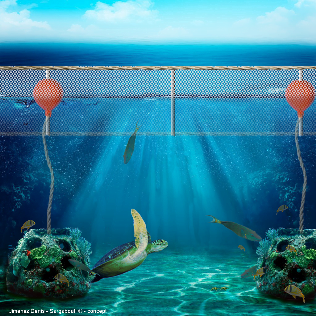 The special floating barrier lets the sea turtles and other marine life pass below