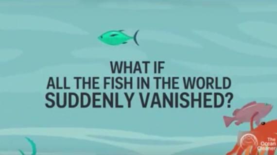 If Fish suddenly vanished